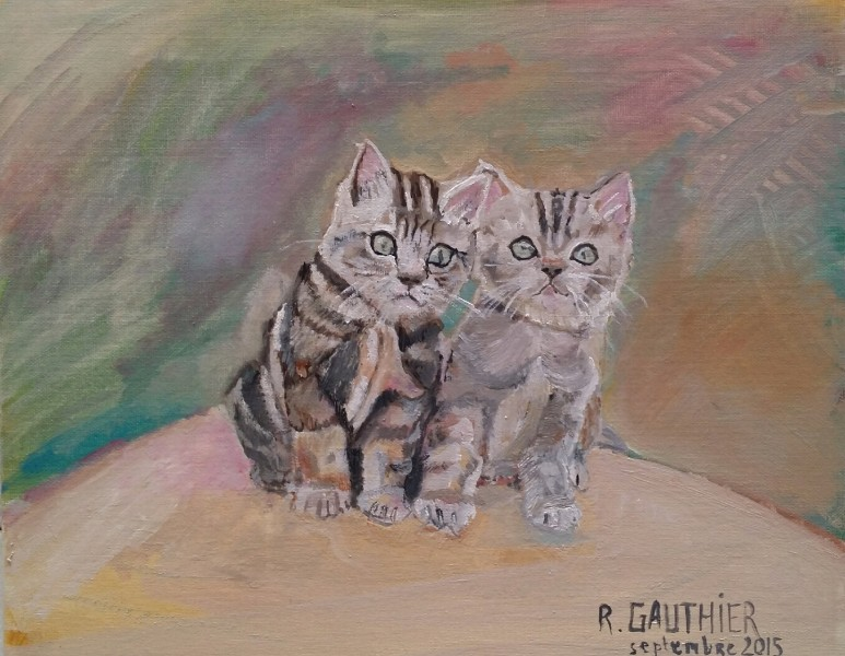 Chat: deux chatons GAUTHIER