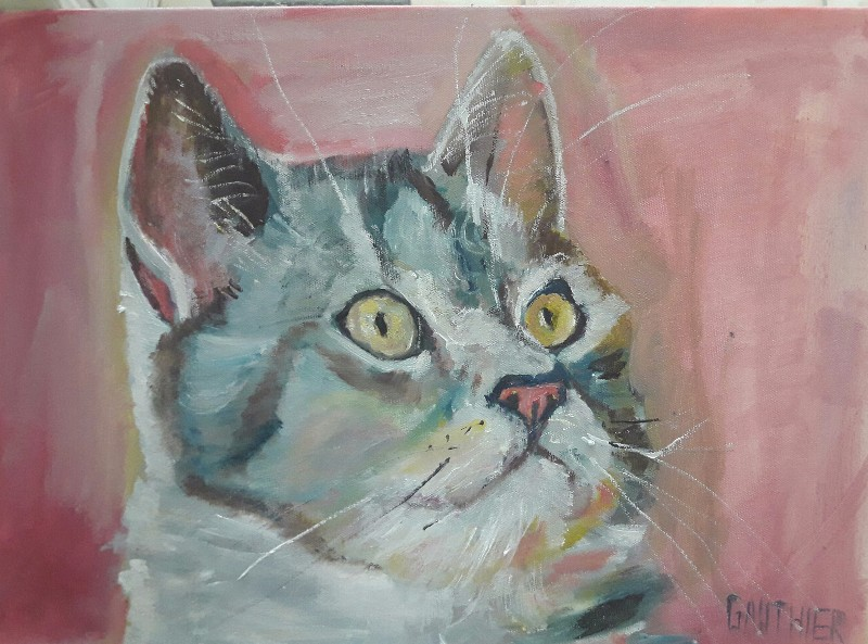 Portrait de chat GAUTHIER