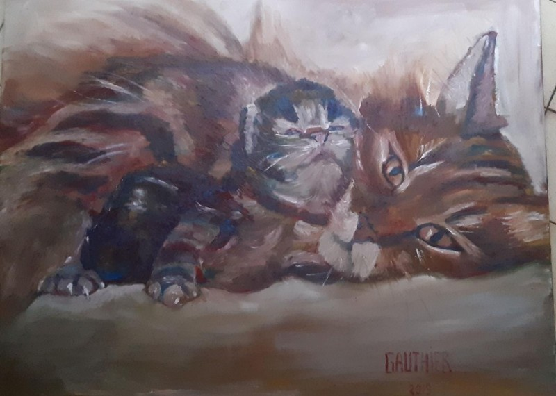 2 chats GAUTHIER